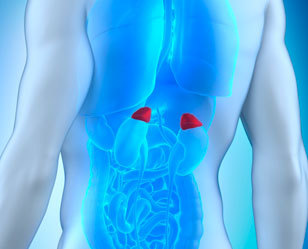 Лечение опухолей (аденомы) надпочечников. Лапароскопия